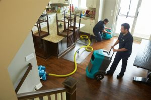 Few features that will influence you to hire water damage restoration service