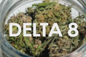Pump Up Your Sales With These Exceptional Best THC Detox Methods Ways